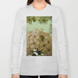 Spring Flowers on mint green background A377 Long Sleeve T-shirt