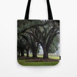 Tree Arch Drive Tote Bag
