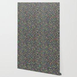 Terrazzo Multicolor Texture Wallpaper