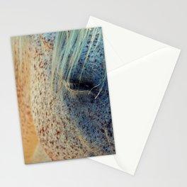 Horse Eye Photography Print Stationery Cards