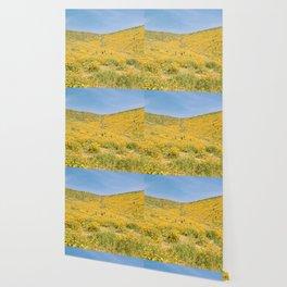 Lake Elsinore Wallpaper