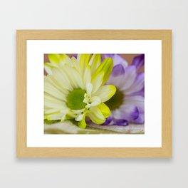 Purple Yellow Framed Art Print
