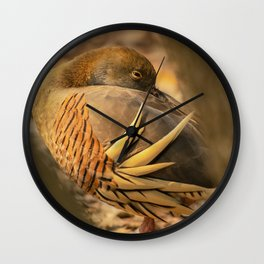 Plumed whistling duck Wall Clock