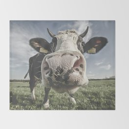Inquisitive Cow Throw Blanket