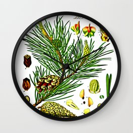 Pinus sylvestris Wall Clock