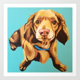 Miniature Long Haired Dachshund Painting on Blue Turquoise  Art Print