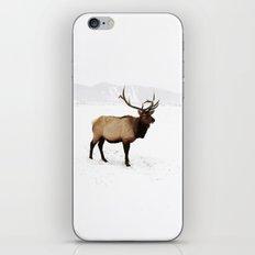 Standing Elk in Jackson Hole, Wyoming iPhone & iPod Skin