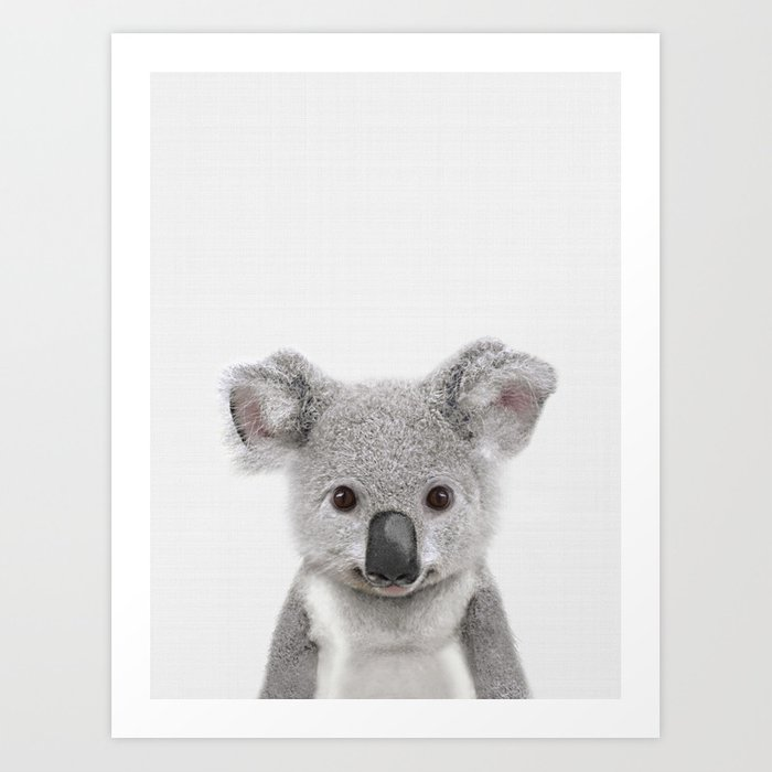 Koala Print Australian Baby Animal Nursery Wall Art