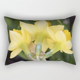 Tête-à-Tête Daffodils from the Back Rectangular Pillow