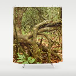 Dancing trees in the cloud forest  -  Tradewinds trail El Yunque rainforest PR Shower Curtain