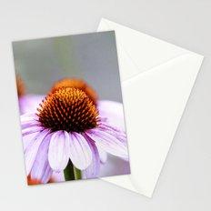 Pink Daisy Stationery Cards