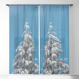 Winter Forest Fir Tree Snow X - Nature Photography Sheer Curtain
