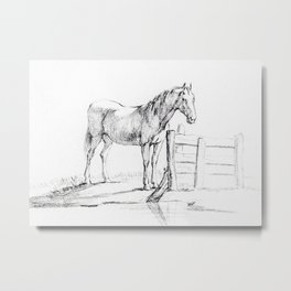 Standing Horse At A Fence Metal Print