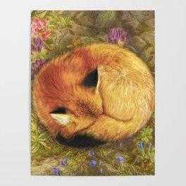 The Cozy Fox Poster