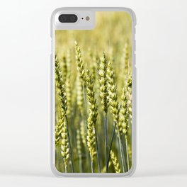 unripe rye Clear iPhone Case