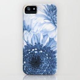 Blue Gerbera iPhone Case