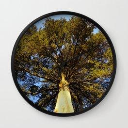 Cypress Wall Clock