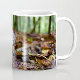 Mushroom In Forest Coffee Mug