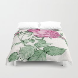 Rosa Centifolia Foliacea Duvet Cover