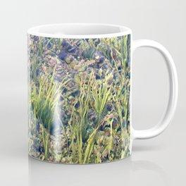 Going With The Flow River Aquarium Coffee Mug