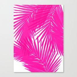 Palms Fuchsia Canvas Print