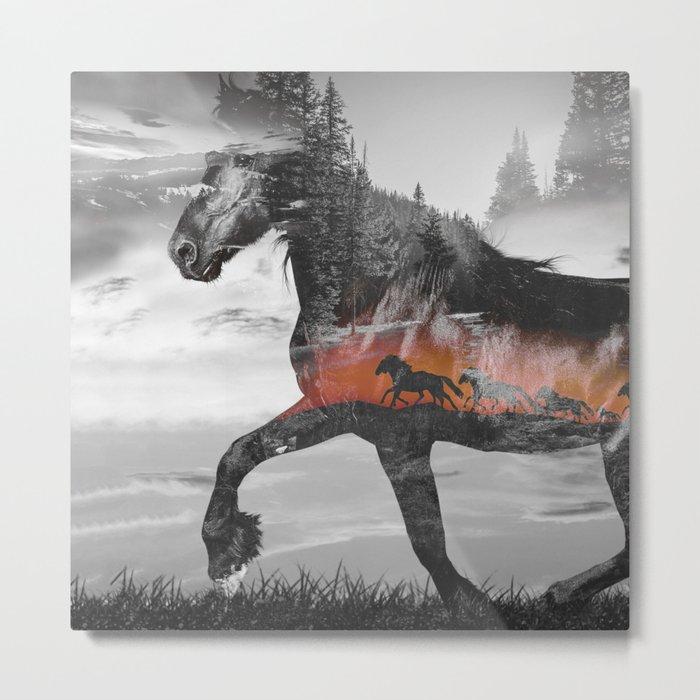Black Horse Sunset Run Metal Print