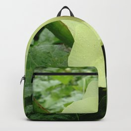 Velvet Butter Backpack