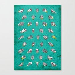 No. 41 - Skulls Canvas Print
