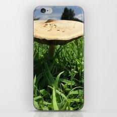 Mushroom in Field iPhone & iPod Skin