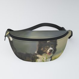 Border Collie In A Field Fanny Pack