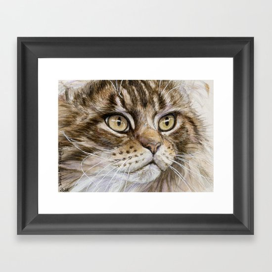 Maine Coon  Framed Art Print