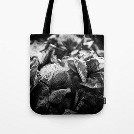 Miguel's Hydrangea 1 Tote Bag