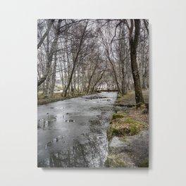 Iced Stream Metal Print