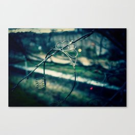 Rusted, busted Princess Canvas Print