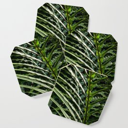Forest Floor Frond Coaster