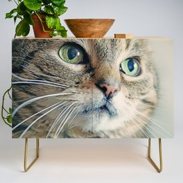My Sweet Lilly the Cat Credenza