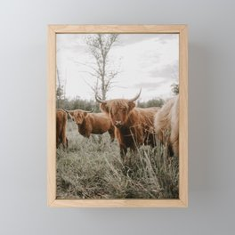 Golden Hour Cattle Framed Mini Art Print