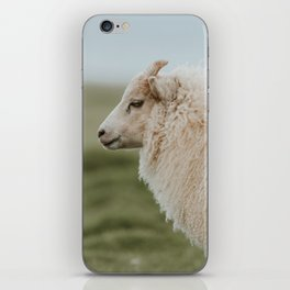 Sheeply in Love - Animal Photography from Iceland iPhone Skin