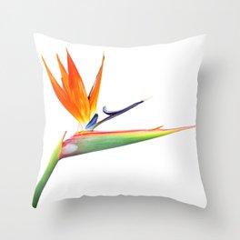 Bird Of Paradise III Throw Pillow