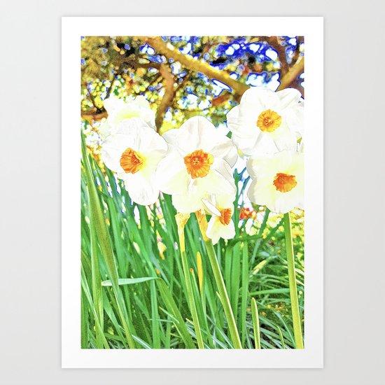 Bright Spring Narcissus Art Print