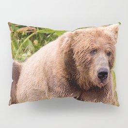 Brown Bear Kodiak Pillow Sham