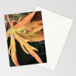 Leaf Study 2 Stationery Cards