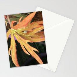 Leaf Study 2 Stationery Cards
