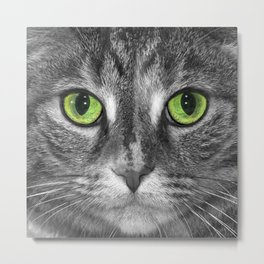 Close up Black and White portrait of a cat with Green Eyes Metal Print