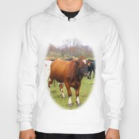 cows Hoodies featuring Cows by AstridJN
