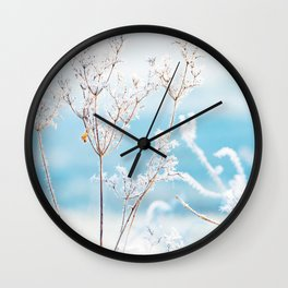 Close-up of hogweed covered with morning frost. Wall Clock