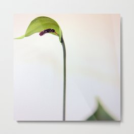 Green Hoodie, Tall Size Metal Print