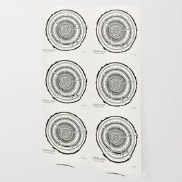 Quaking Aspen – Black Tree Rings Wallpaper