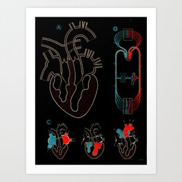Paul Sougy: The Human Heart, 1950s (proceeds benefit The Nature Conservancy) Art Print