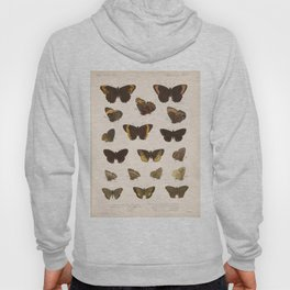 Vintage Scientific Hand Drawn Illustration Anatomy Of Butterfly Insect Patterns Biology Art Hoody